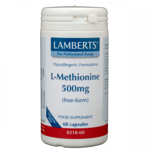 L-Methionine 500mg